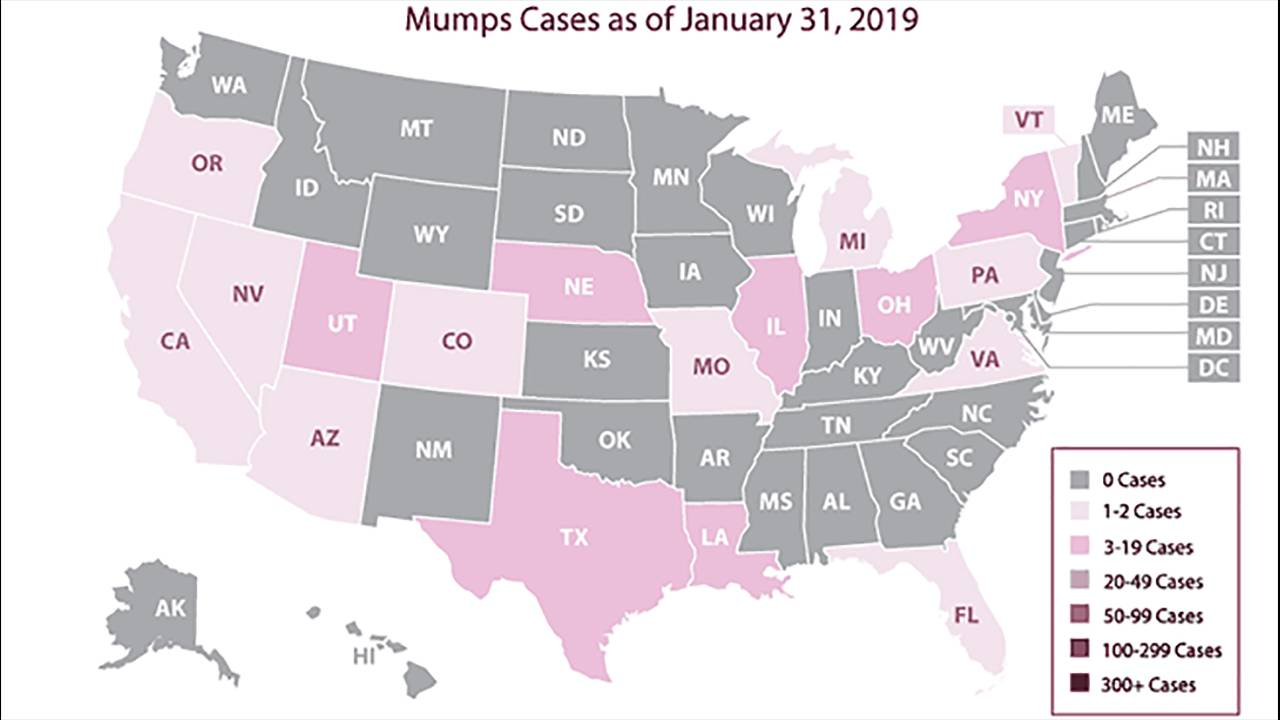 mumps cases as of Jan. 31, 2019_1549748456356.PNG.jpg