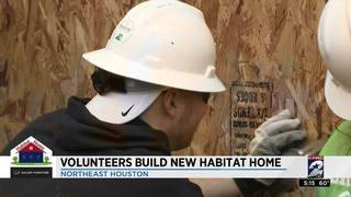 Freddy's Frozen Custard and Sprout's volunteers build new Habitat home