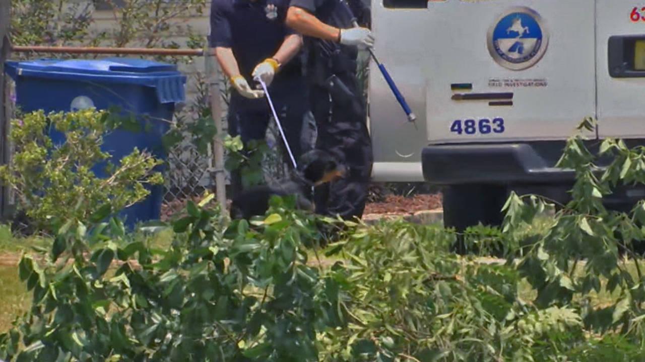 Dog-removed-from-Arlington-_1531693276829.jpg