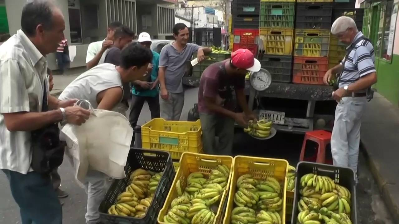 Demand for bananas in Venezuela May 24
