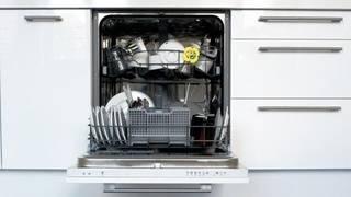 Dishwasher staying power
