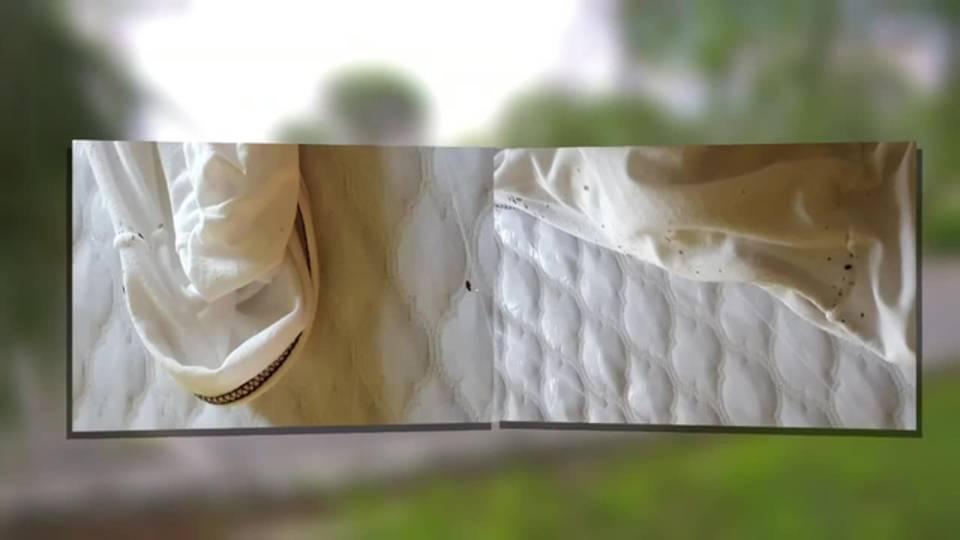Eden Gardens bed bugs