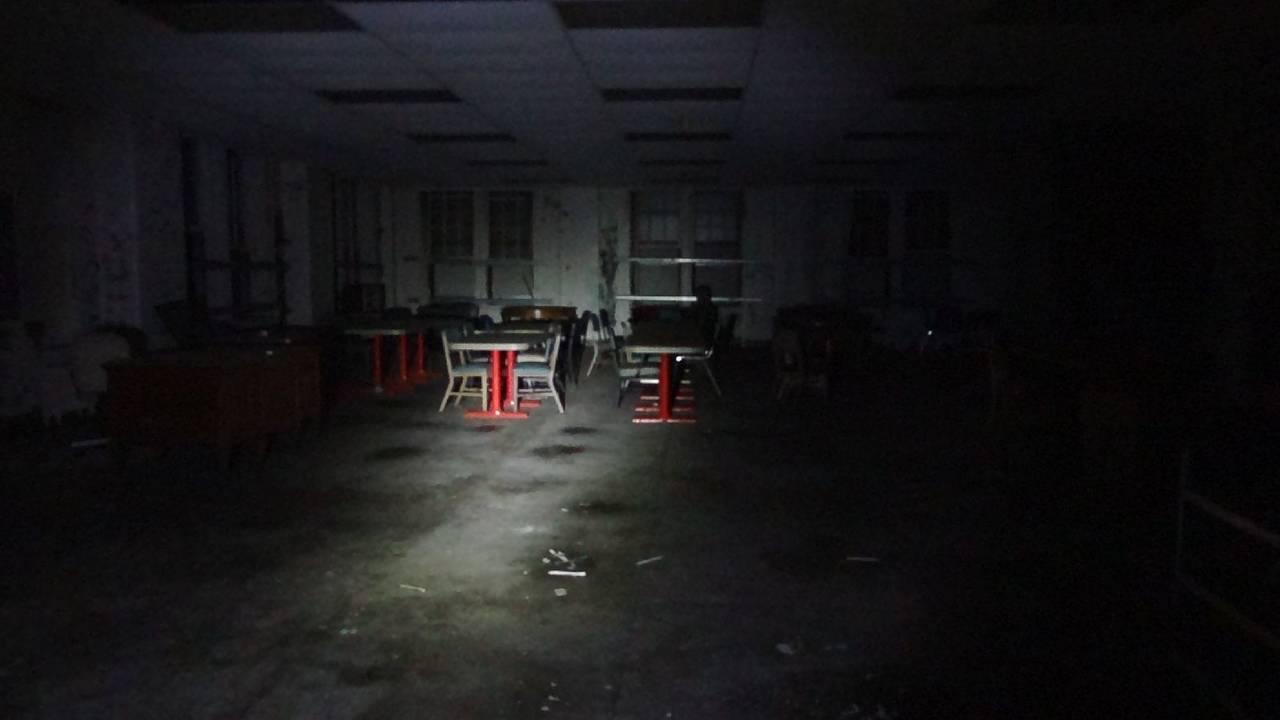 Shadow in Dining Room - First Floor_1540905740668.jpeg.jpg