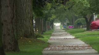 Officials: Man attempts to abduct child in Grosse Pointe Woods