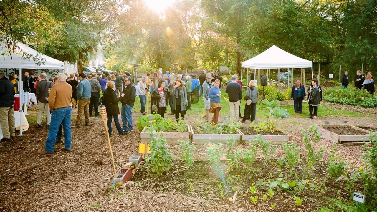 Chefs in the Garden 3 Growing Hope