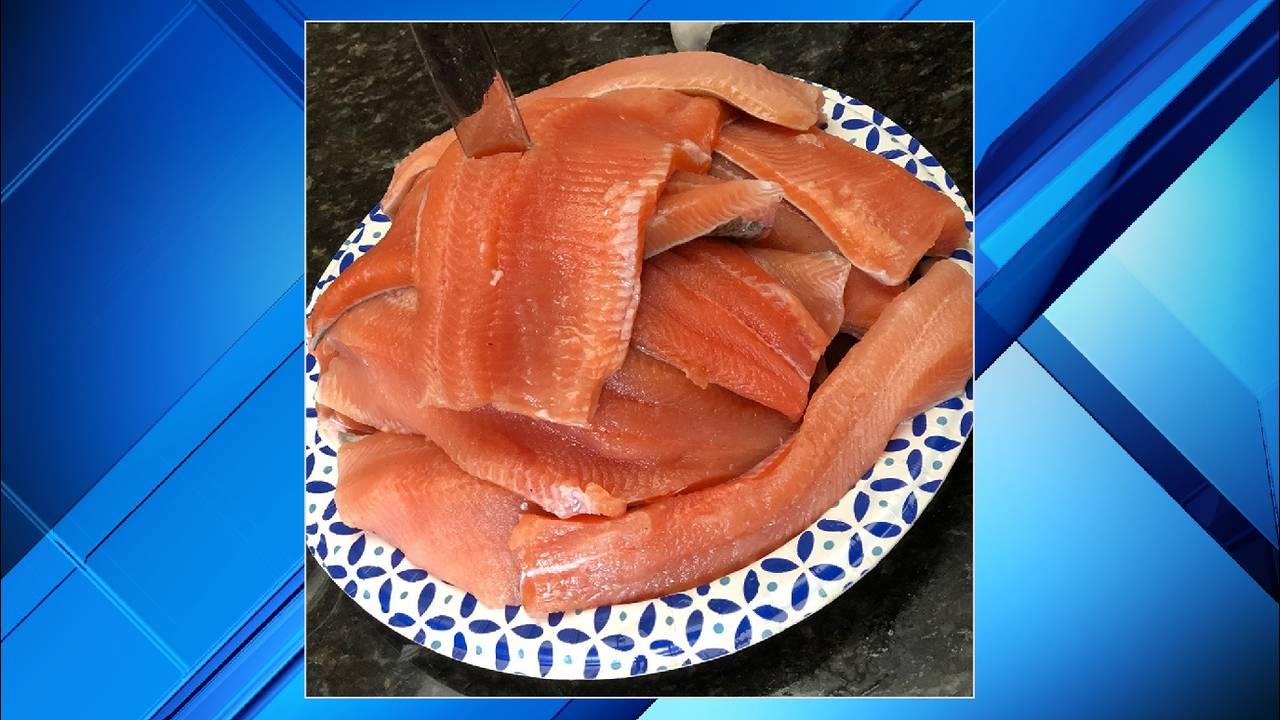 matt fish xxx_1559663112400.png.jpg
