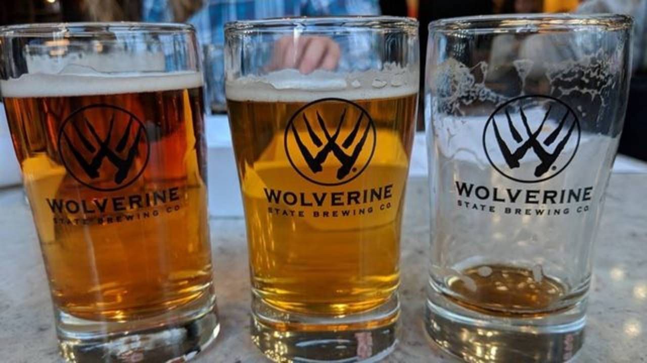 Puppies & Pints - Wolverine State Brewing Company