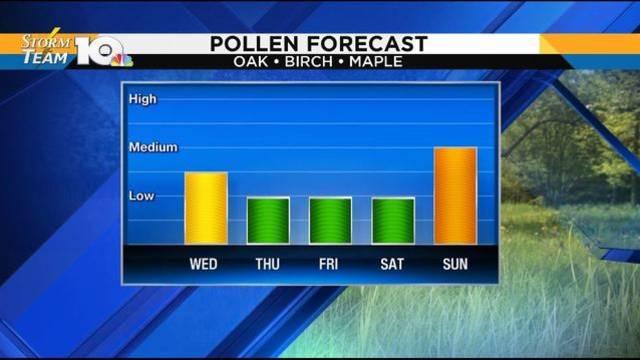 pollen_1526460130768.JPG