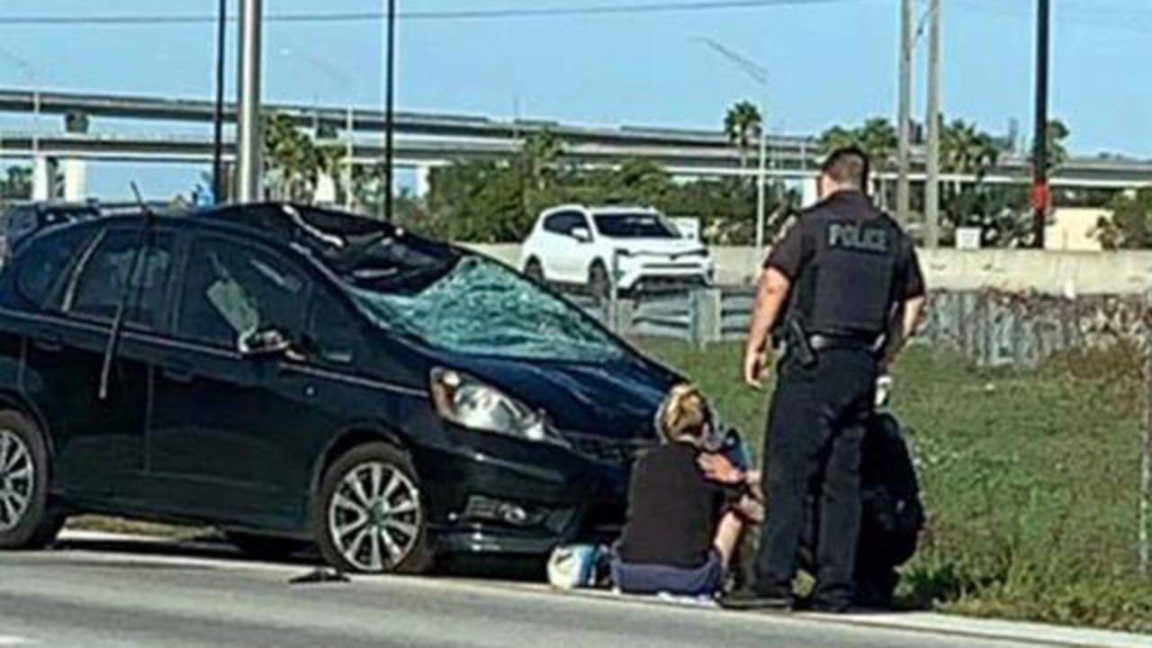 Driver crashes into pack of cyclists in Davie