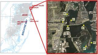 Swimming advisory in effect for Greynolds Park, Oleta River State Park