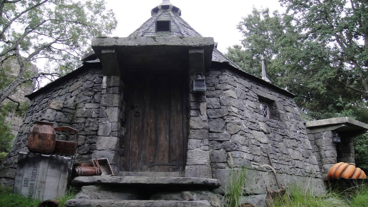 hagrid's hut_1539359294837.jpg.jpg