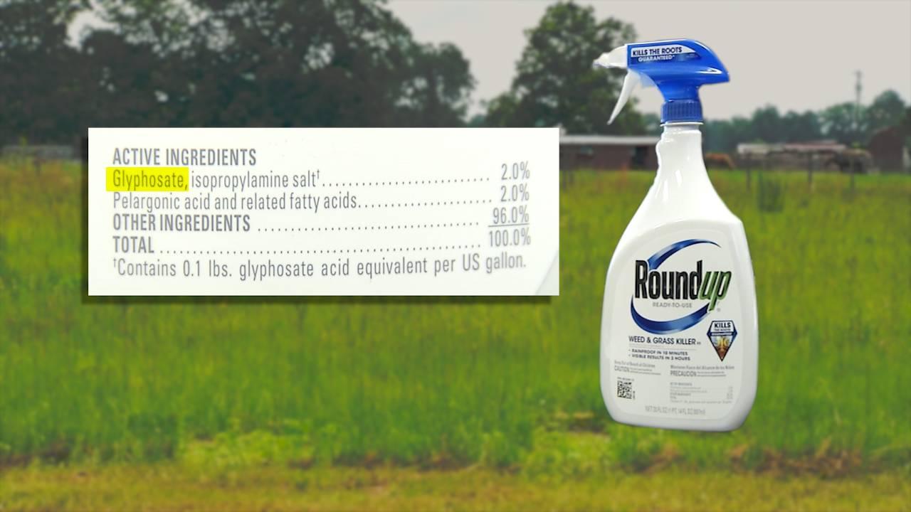 Roundup with Glyphosate
