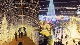 Florida Christmas.World S Largest Christmas Light Maze Coming To Florida