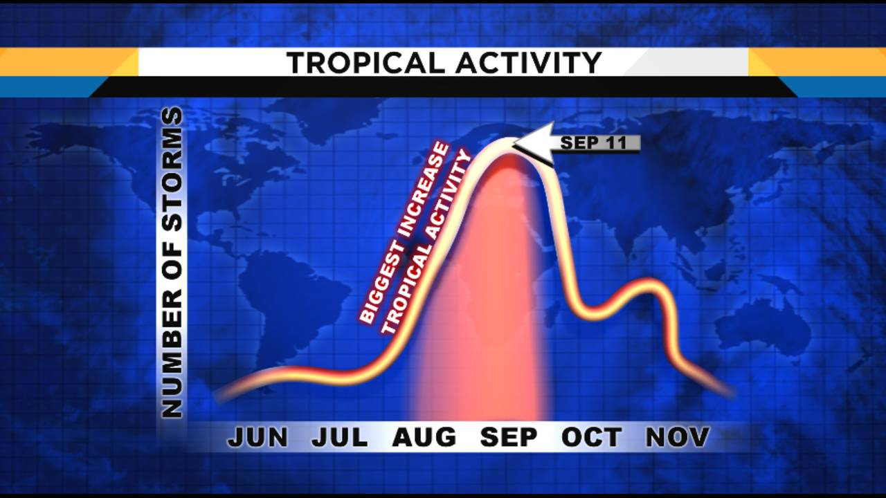 tROPICAL acTIVITY_1563548713168.PNG.jpg