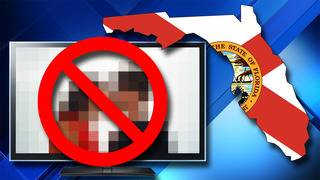 Florida Legislature could declare pornography 'a public health risk'