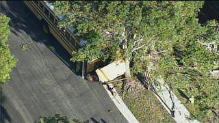 2 students injured when school bus crashes into tree in Miramar