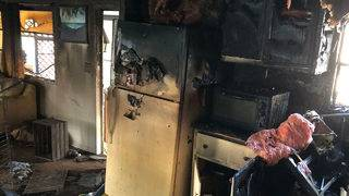 Cat dies during mobile home fire in Dania Beach, firefighters say