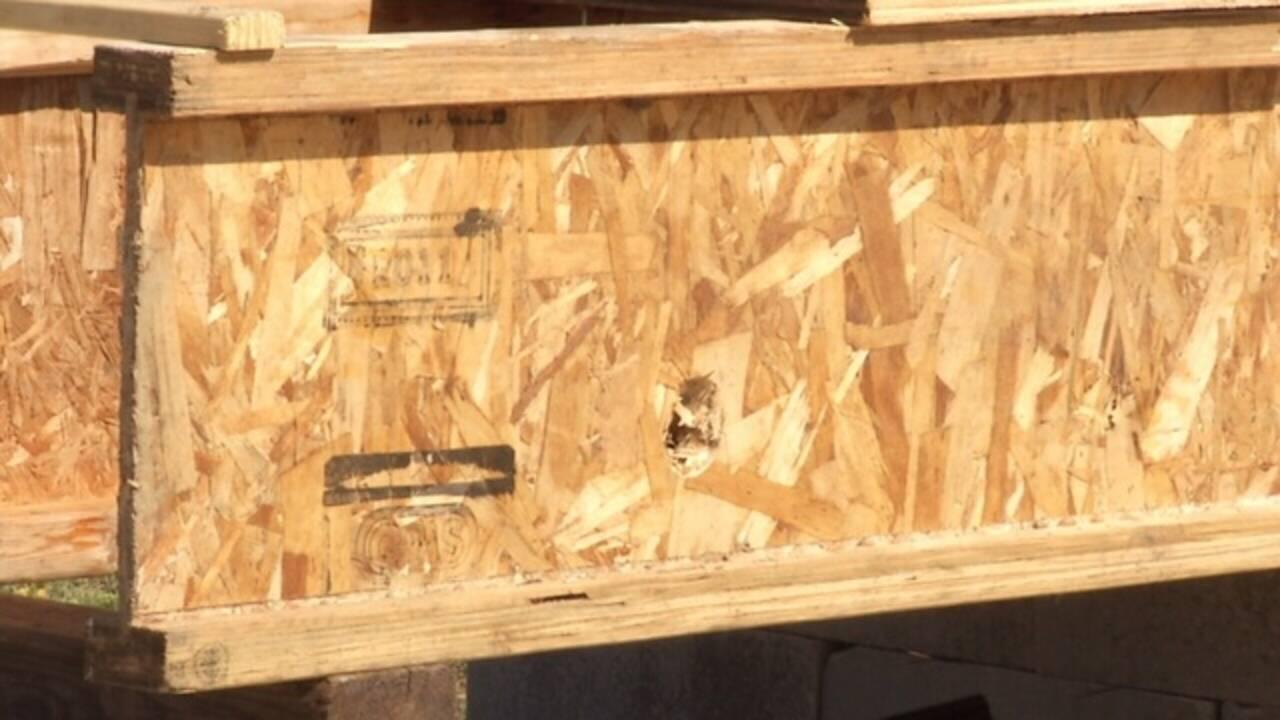 OSB-wood-pix.jpg_31431956