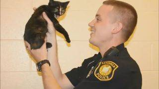 Body cam video shows officer rescuing cat from median along busy I-96 in Livonia