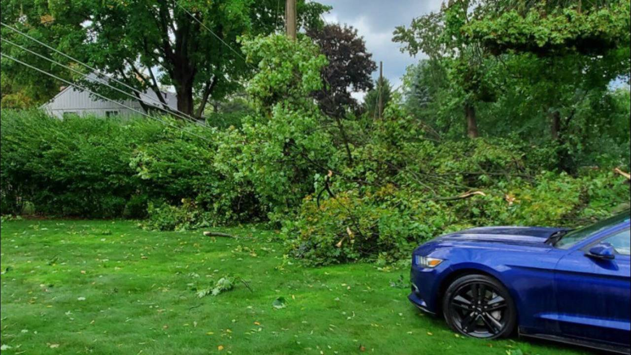 Storm damage two final_1568479556512.jpg.jpg