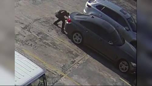 Wannabe thieves struggle to break into man's trunk