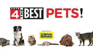 Winners of Local 4's Vote 4 The Best Pets 2019