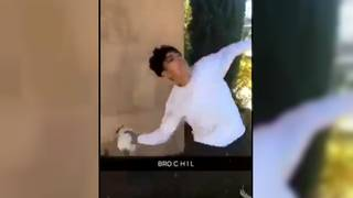 California teen arrested for animal cruelty after cat-throwing video goes viral