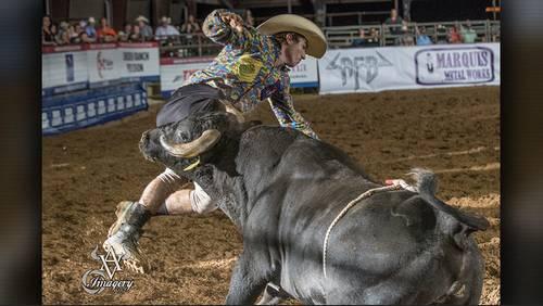 A look inside freestyle bullfighting