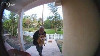 Corgi vs. Coyote: Doorbell camera captures comical chase