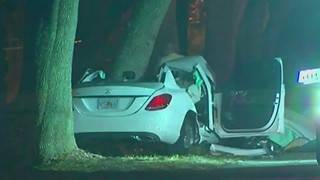 2 carjacking suspects killed in Port Orange crash while fleeing police