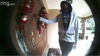 Thief steals guns from Cooper City home