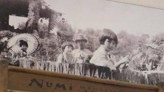Throwback Thursday: Origins of Japanese Tea Garden, its evolution from…