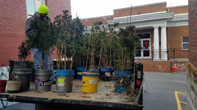 Giles County grow house 2 010318_1515002028631.jpg
