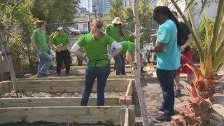 Publix employees serve with pleasure, volunteering in communities