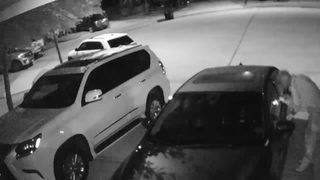 Fort Bend Neighborhood Car Burglaries