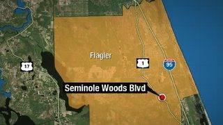 Palm Coast woman, 85, dies in crash