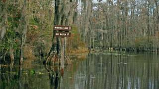 Stephen C. Foster State Park reopens near West Mims fire