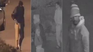 Video released of persons of interest in Spring couple's slaying
