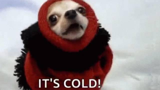 Memes Gifs Poke Fun At Crazy Texas Weather