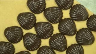 Mark visits Whetstone Chocolates in St. Augustine
