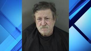 Florida man accused of leaving dog in hot car outside of bar