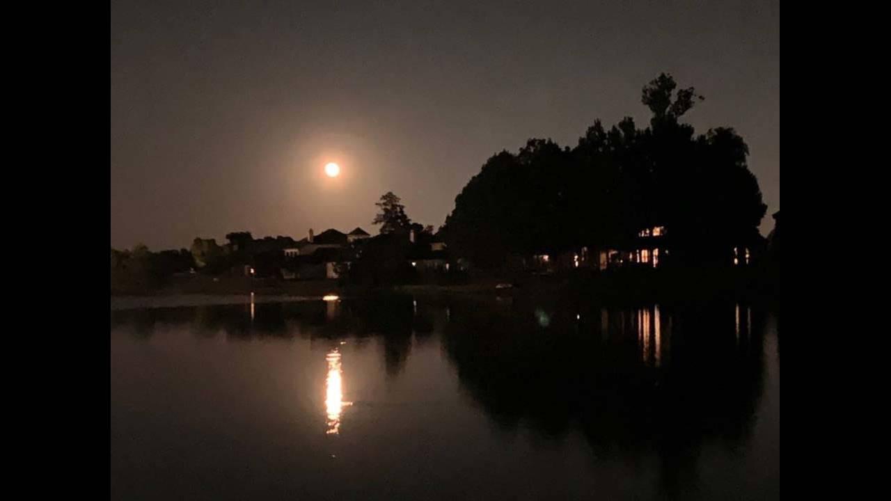 harvest moon 2019 (10)_1568546934837.jpg.jpg