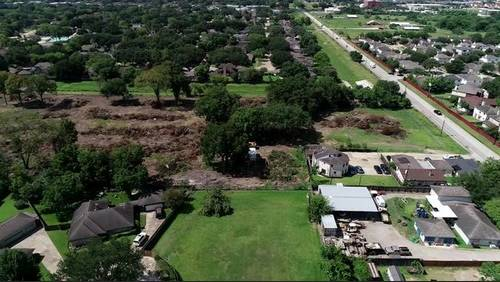 Cherished oak trees may be removed against SW Houston residents' wishes