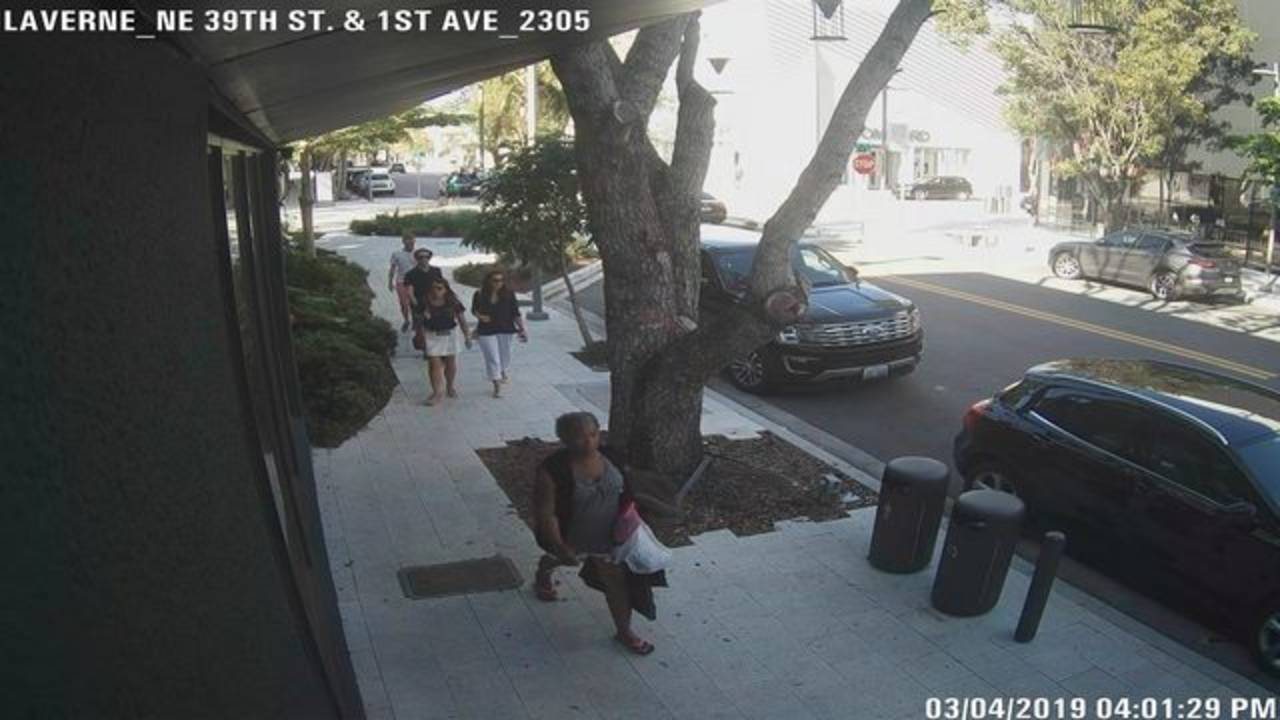 Woman who tried to kidnap boy in Miami pic 1