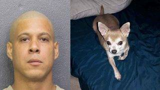 Pembroke Pines man arrested after attacking ex-wife, drowning dog, police say