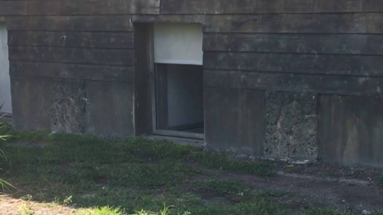metal door similar to one that killed african painted dog at Zoo Miami