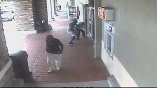 Thief caught on camera snatching cellphone outside Publix