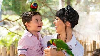 SA Zoo extending hours during spring break