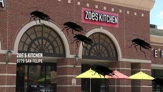 Restaurant Report Card: Slime, roaches force local eateries to clean up
