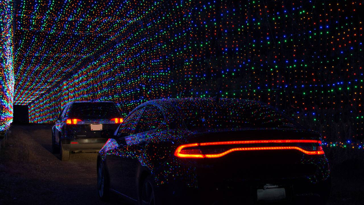 Magic-of-Lights-Daytona_1543522746388.jpg